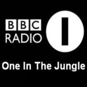 BBC Radio One in the Jungle – 1995